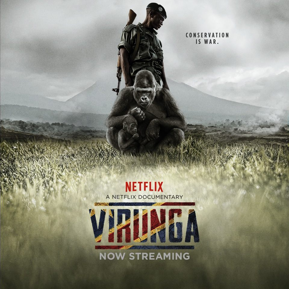 Movie Time: Virunga