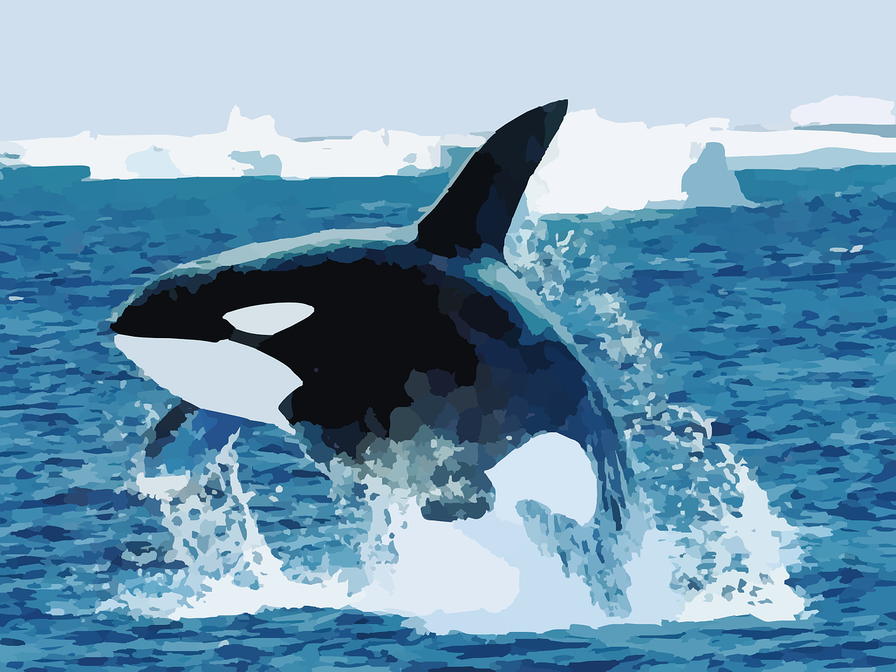 The Orca Awareness Project