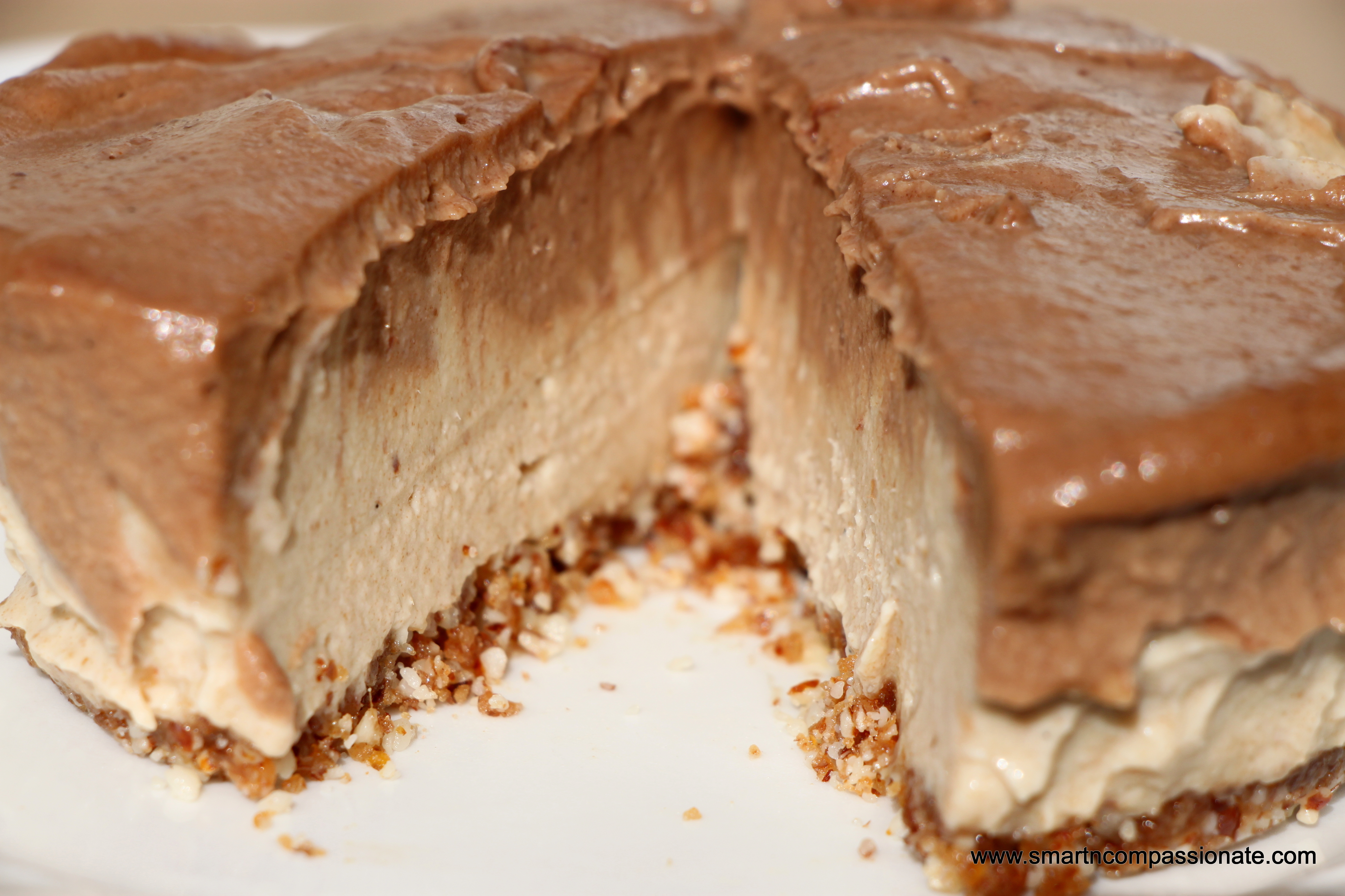 "Raw Vegan ""Cheesecake"""